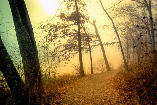 usa lake weather fog sunrise landscape photography virginia day path echo foggy down scene richmond rva glenallen sunward