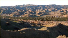 Sunrise, San Timoteo Canyon 1-20-13a
