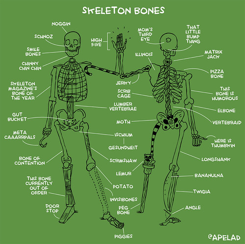 know your bones by Ape Lad