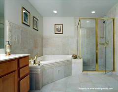 www.aadesignbuild.com, A&A Design Build Remodeling, Master Bathroom, Washington DC, Chevy Chase, Bethesda, Corner Shower, Silver Spring, Aging in Place