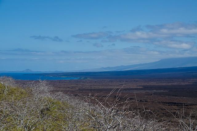 Galapagos: Isabela Island, near Lake Darwin