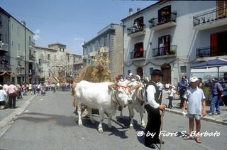 Jelsi (CB), 1998, Festa del Grano per Sant'Anna.