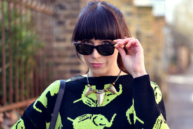 Elephant Neon Jumper Black Yellow Outfit CATS & DOGS 4