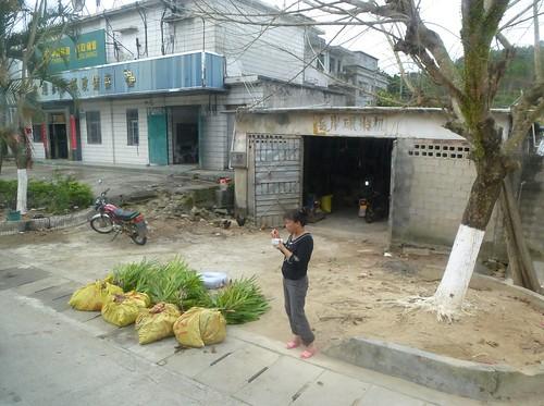 Hainan13-Wuzhishan-Boao-Bus (10)