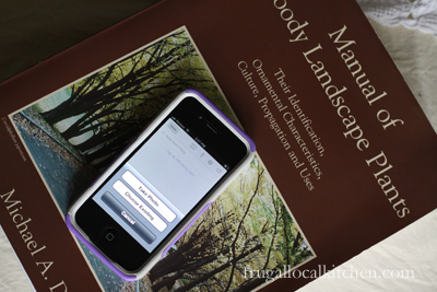 Smartphone and Plant Identification and Ideas