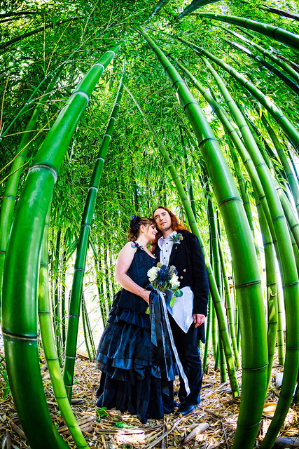 WallflowerPhoto-Leonard-wedding-125
