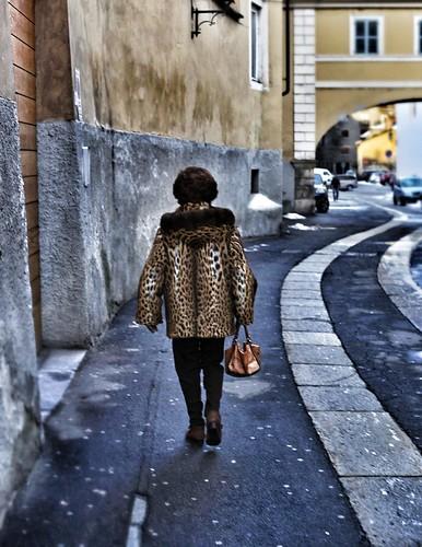 Orrible leopard in town by enki22