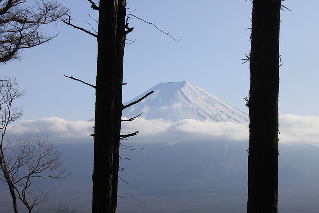 View from the Mitsutoge Trail