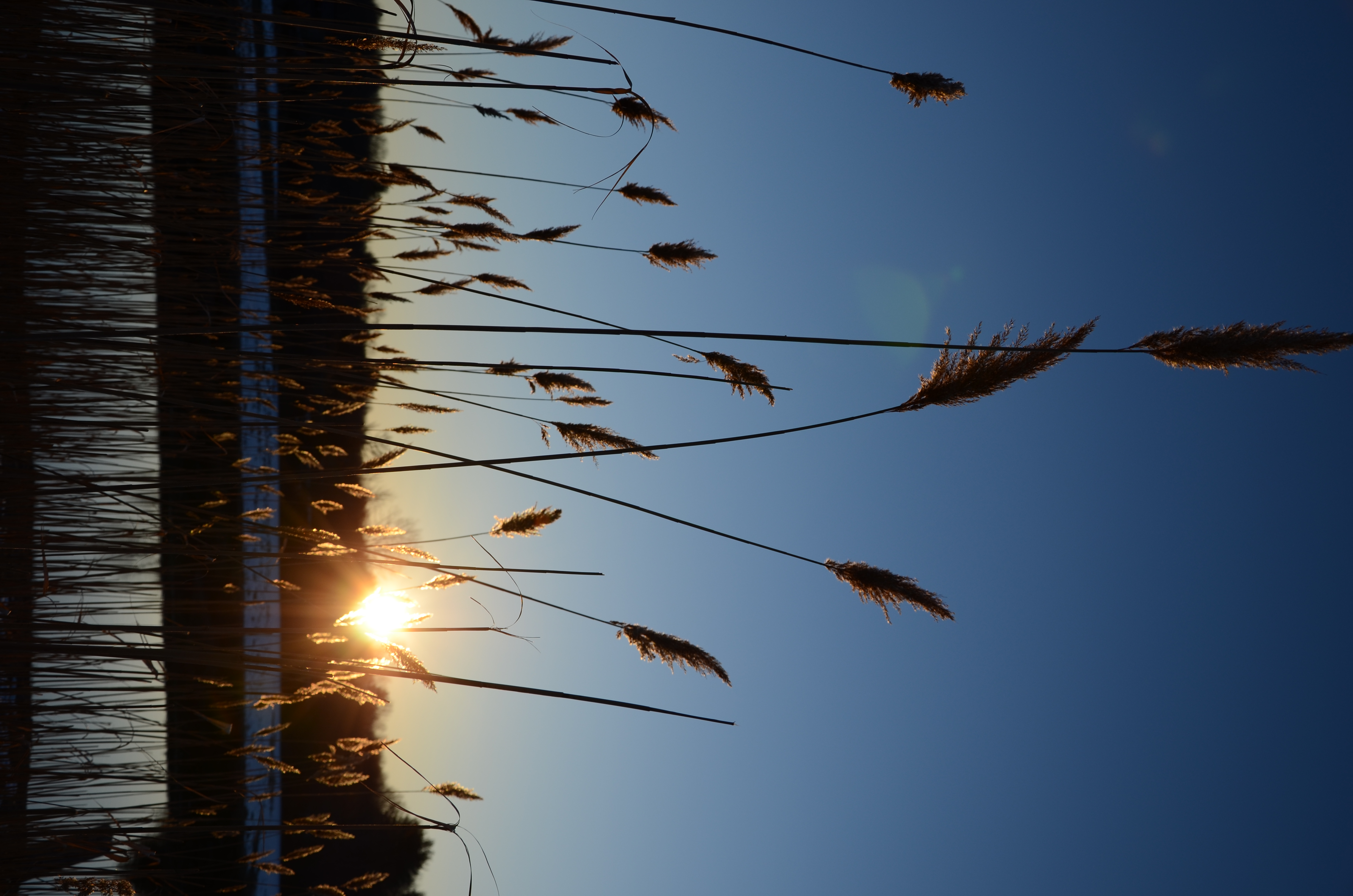 Wilder St, Lowell, MA, USA Sunrise Sunset Times