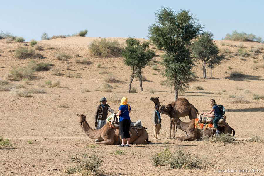 Привал в пустыне Индии