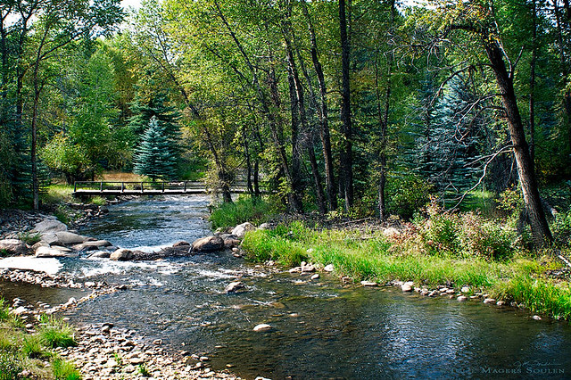 The beautiful Roaring Fork River meanders through a green woodland with a foot bridge crossing.