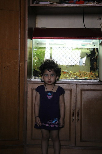 Nerjis Asif Shakir And Her Fish Aquarium by firoze shakir photographerno1