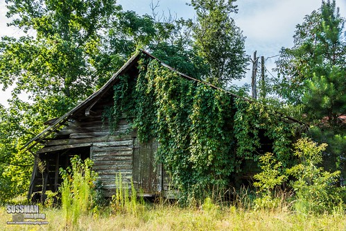 abandoned barn barnhunting barnhuntingtrip barns eastcentralgeorgia georgia georgiabackroads georgiabarnhunters old rural ruralgeorgia sonyslta77 sussmanimaging thesussman wrightsville unitedstates