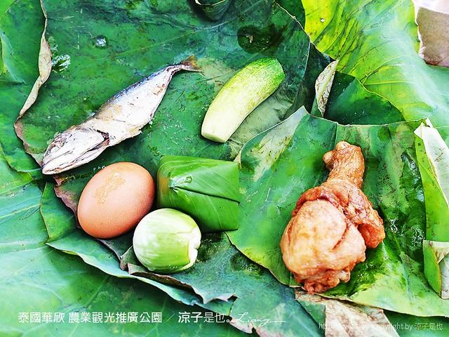 泰國華欣 農業觀光推廣公園 2