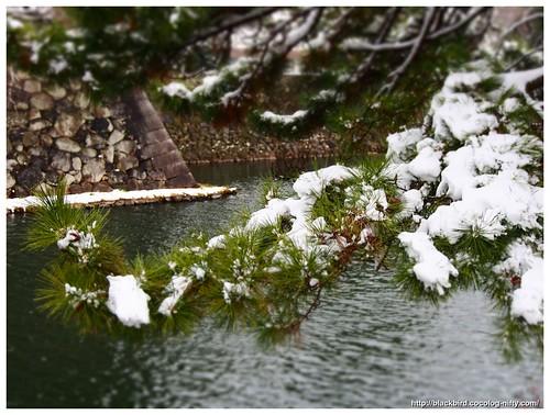 Snow day #01