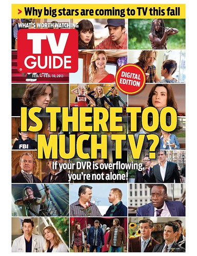 Is There Too Much TV? Cover