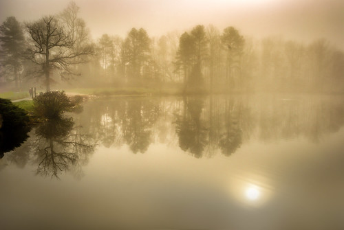 usa lake fog sunrise landscape photography virginia soft glow echo foggy silhouettes ethereal rva waterscape the