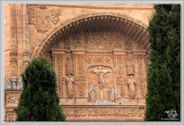 8 Salamanca