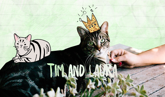 tim the cat and his owner Laura
