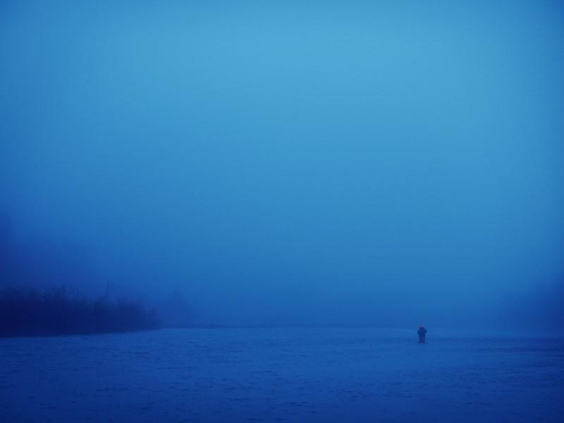 Eel Fog in the Morning