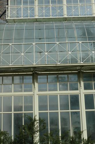 National Botanic Gardens, Dublin, Ireland