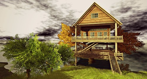 Treehouse over Troubled Waters