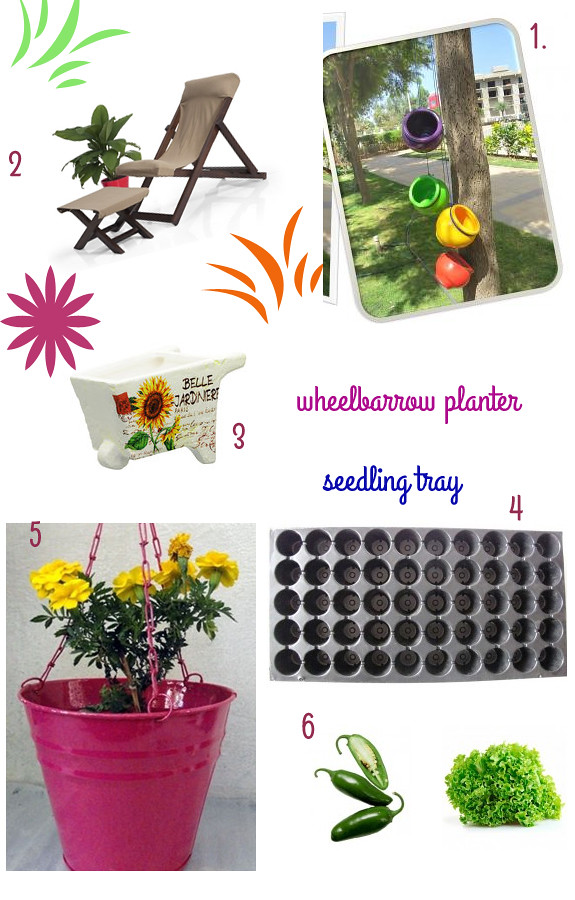 Friday Shopping: 6 picks to set up your balcony garden (mostly under Rs.1000)