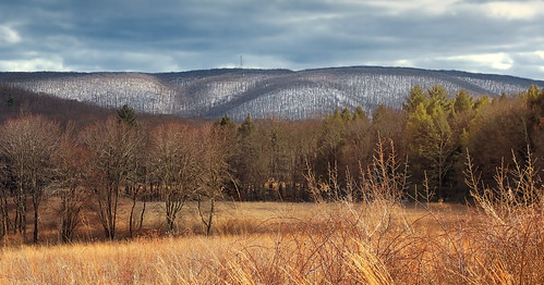 trees sky snow mountains field grass clouds landscape spring pennsylvania meadow hills creativecommons appalachianmountains stratocumulus greenmountain luzernecounty nescopeckstatepark
