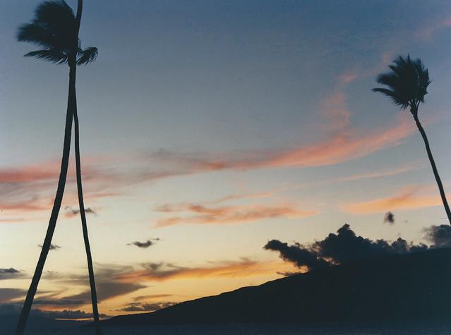 Maui 9 1