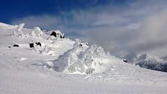 Beautiful snow ghosts