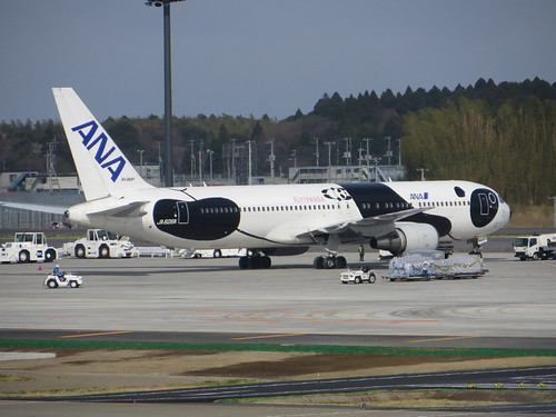 ANA Fly Panda Jet at Narita Airport in Japan