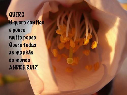 QUERO by amigos do poeta