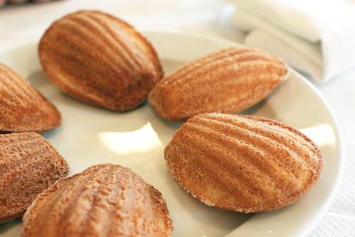 Madeleines fresh out of the oven