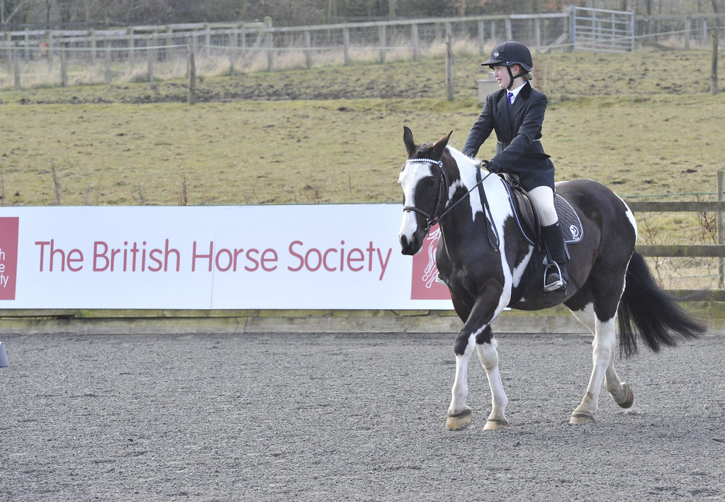 National Riding Schools Competition: 2013 Results | British Horse ...