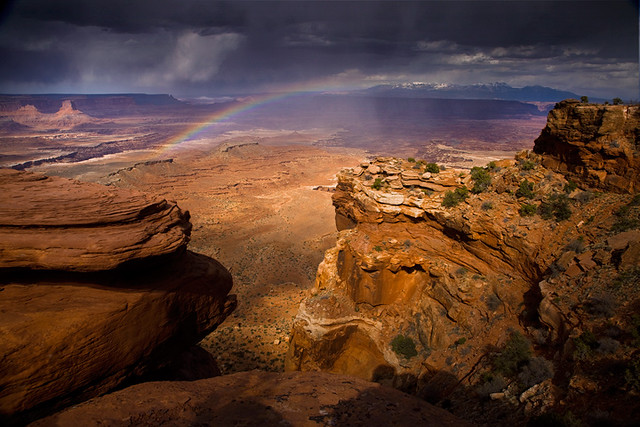 The Painted Desert by Michael Anderson
