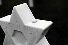 Hymen H Stein