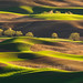 Palouse Layer Cake by Ryan McGinty