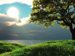 digital scenery hd wallpaper backgrounds(For More Information Click Below Link)