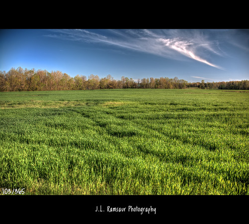 sky green nature field clouds rural landscape outdoors photography photo nikon tennessee bluesky pic photograph thesouth 365 hdr madisoncounty greenmeadow ruralamerica whiteclouds beautifulsky jacksontn bemis photomatix deepbluesky bracketed skyabove project365 westtennessee 2013 ruraltennessee ruralview 365daysproject 365project 365photos 103365 ibeauty southernlandscape hdraddicted allskyandclouds d5200 newcrops southernphotography screamofthephotographer jlrphotography photographyforgod worldhdr thehubcity bemistn nikond5200 engineerswithcameras god'sartwork nature'spaintbrush jlramsaurphotography 1yearofphotographs 365photographsinayear 1shotperdayfor1year