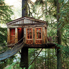 Tree-House-Point-Washington-USA