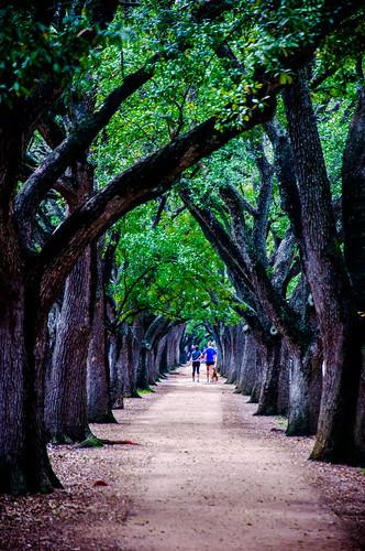 Path @ Rice University