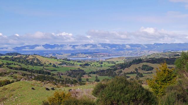 Near Kohukohu, NZ