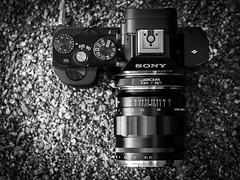 Sony A7r + CV Nokton 35mm f1.2