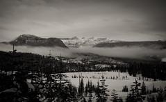 Mt Albert Edward from Mt Washington