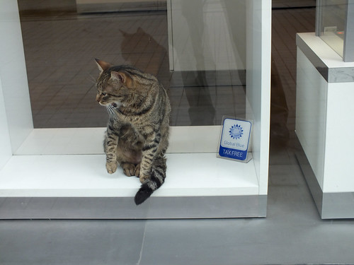 Cat with taxfree
