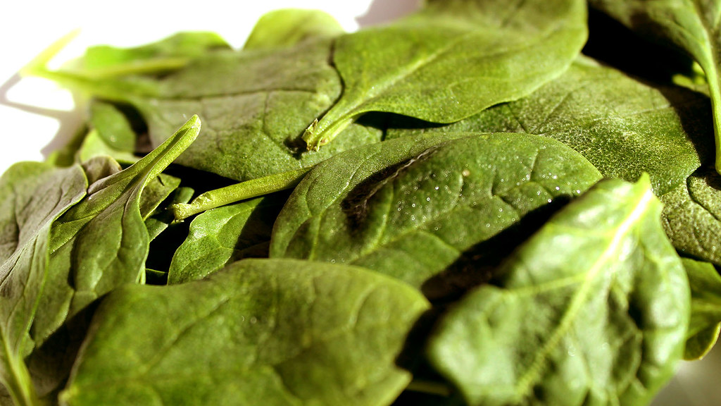 spinach frozen, chopped or leaf, cooked, boiled, drained, with salt