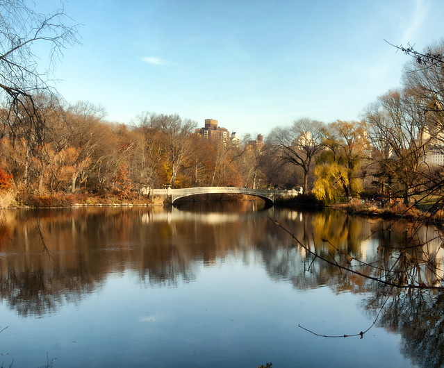 Bow Bridge in Central Park, NYC - Flickr CC kevinpoh