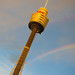 Sydney Tower + Rainbow