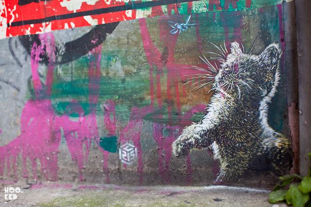 C215's clowder of cat stencils in East London