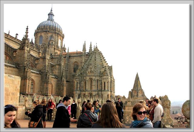 13 Salamanca